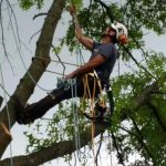 Mark Climbing With Rope